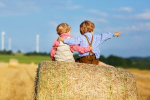 Succession planning for farming families. Two young boys on a hay bale.